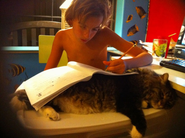 Throwback 2011  – Blackjack gets involved in homeschooling.
