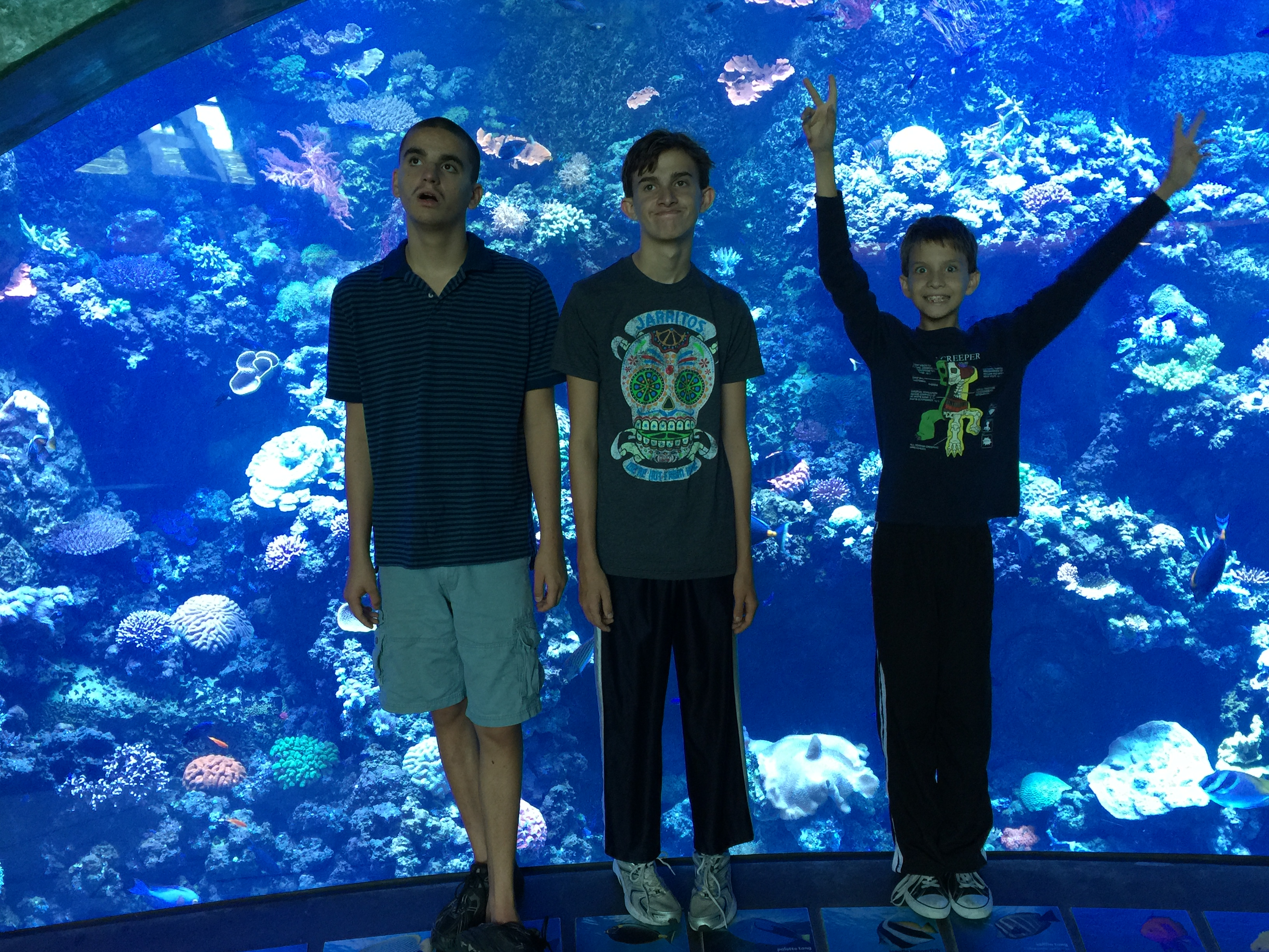 The Aquarium Pacific Homeschool Day -2015