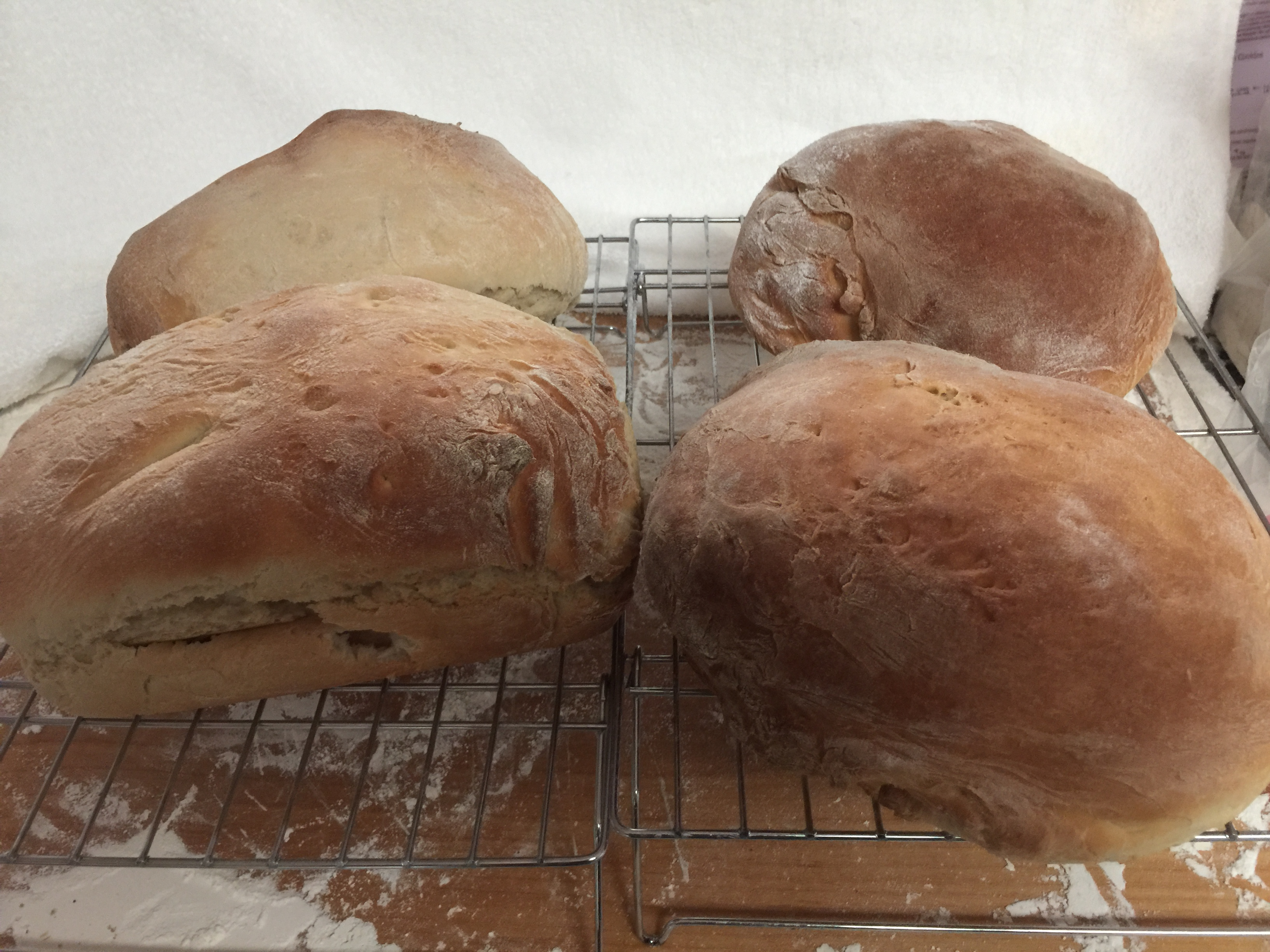Amish White Bread- Winner!